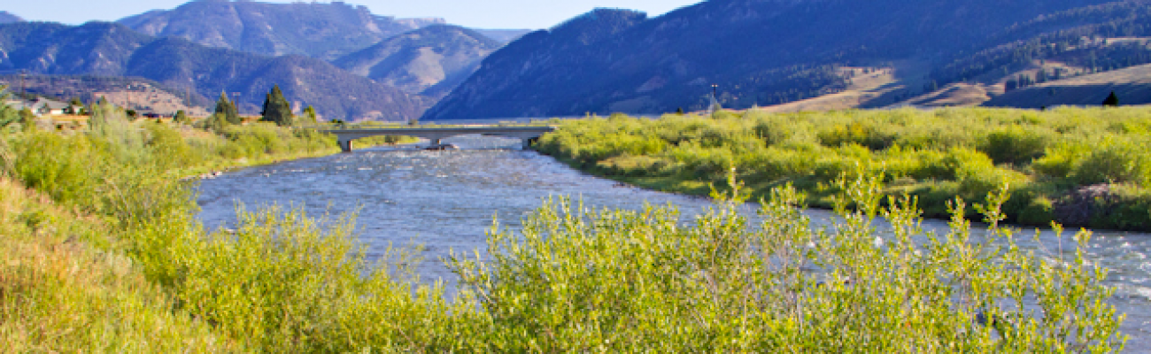 Gallatin River Picture Crop